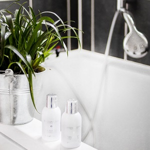 The top 5 best plants that will grow and thrive in your bathroom