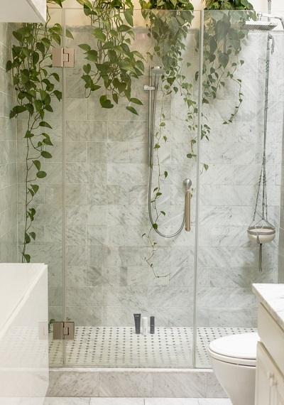bathroom-plants-shower